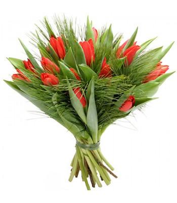 Bukiet 15 Tulipanów Czerwonych