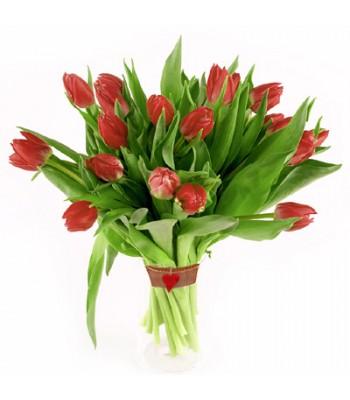 Bukiet 21 Tulipanów Czerwonych